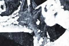 frozen_nh_48